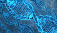 Biochemistry mollecule DNA
