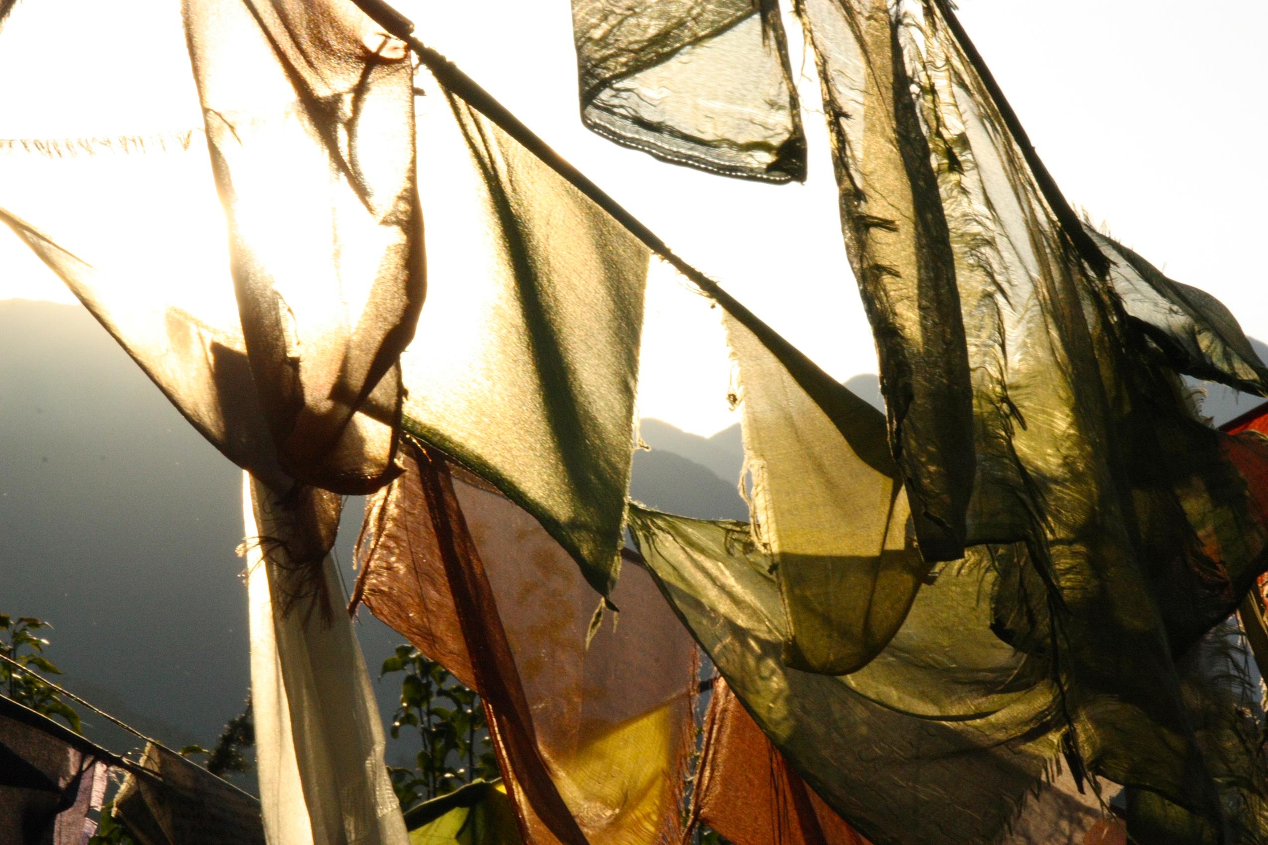 Prayer flags (McLeod Ganj, Himachal Pradesh)