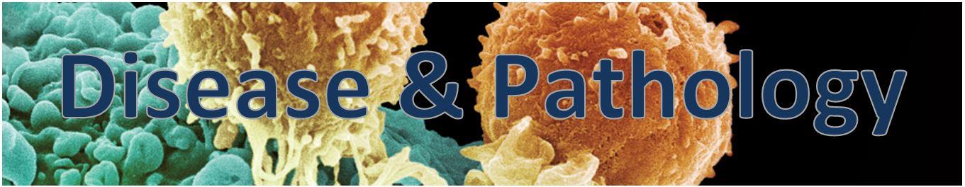 Disease & Pathology
