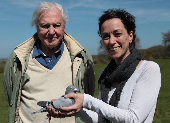 Professor Dora Biro with Sir David Attenborough