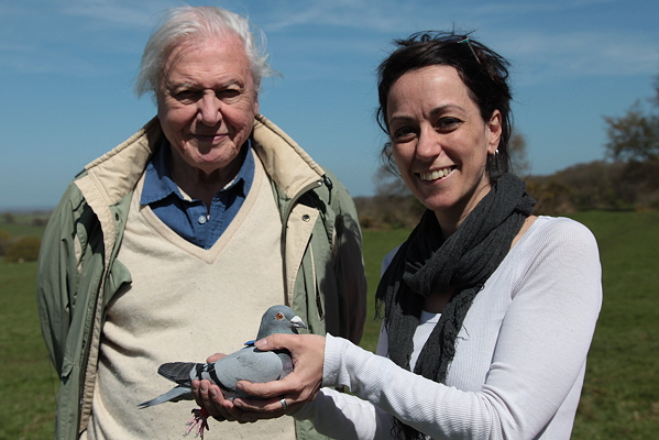 Professor Dora Biro with Sir David Attenborough