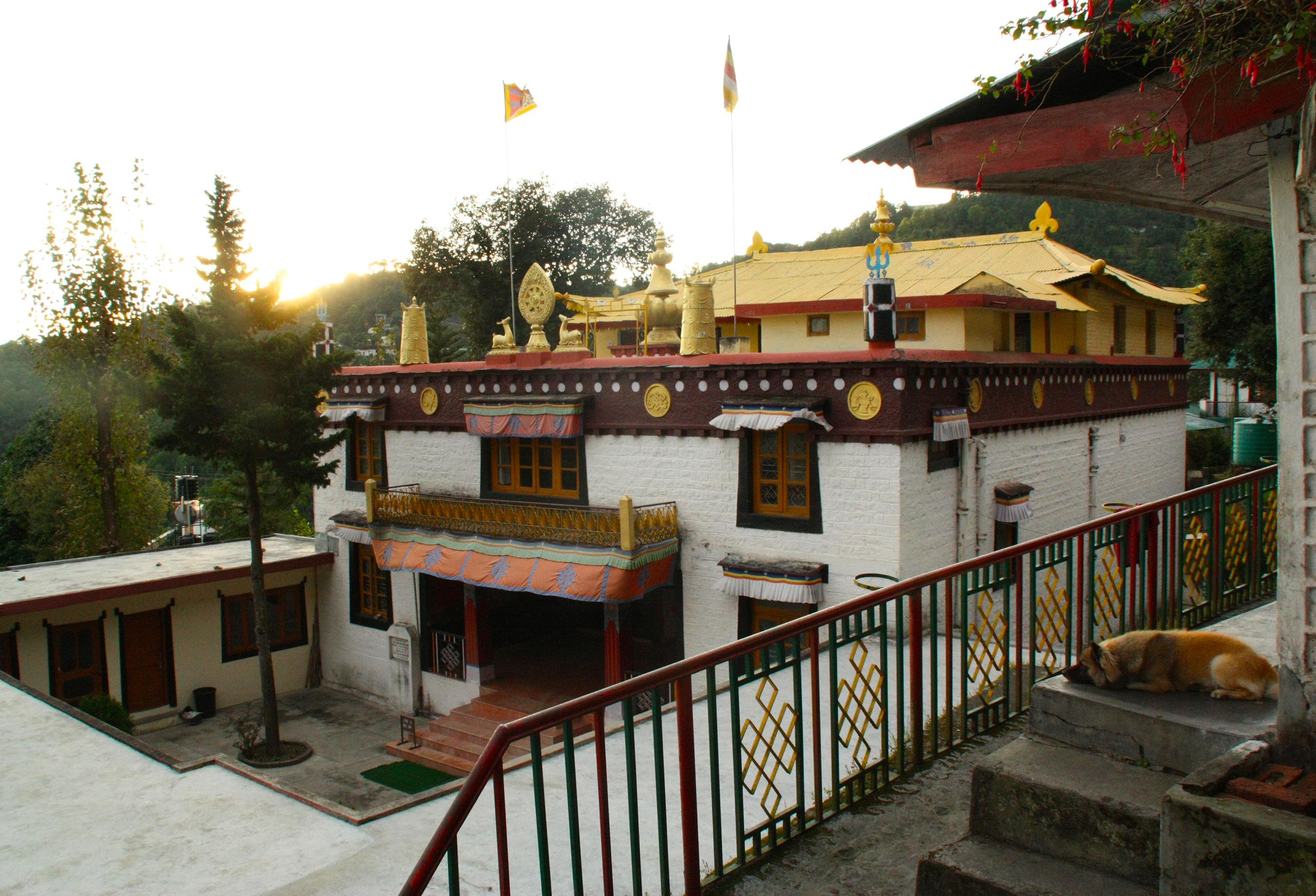 Tse Chokling Monastery (McLeod Ganj, Himachal Pradesh)